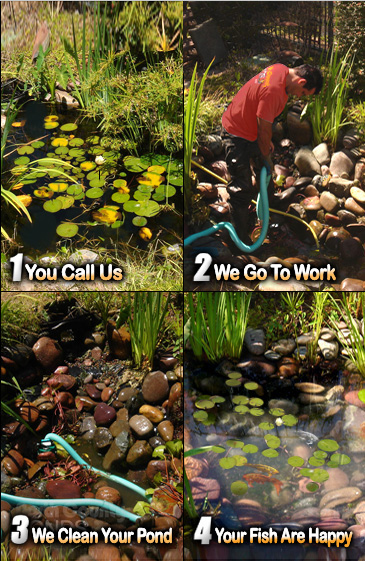 Pond Clean Outs North County San Diego Koi Pond Maintenance North County Ponds